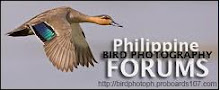 Philippine Bird Photography Club