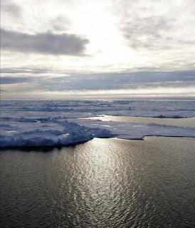 زيارة الى قارة انتاراكتيكا 5.jpg