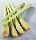lemongrass serai