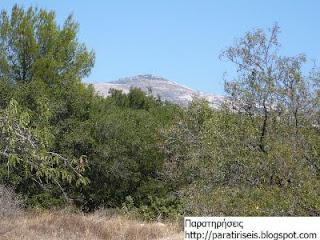 Κτήμα Συγγρού - θέα προς την Πεντέλη(;)