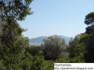 Κτήμα Συγγρού - δάσος, θέα προς Υμηττό