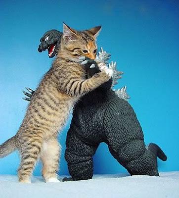 http://3.bp.blogspot.com/_0Duuqhce4-U/SeRtofcDhwI/AAAAAAAAAfo/i2BTx1Mccxg/s320/funny-picture-Godzilla-cat-picture-Gen-Kanai.jpg