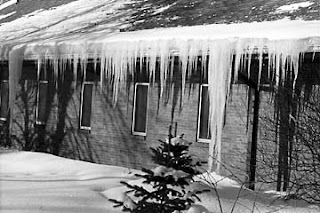 roofs caused by cold-climate ice dam leaks