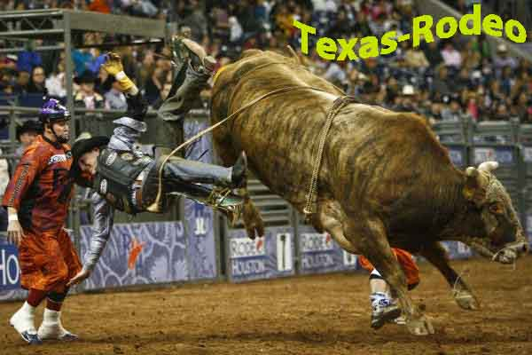 Houston+Rodeo ... Houston Rodeo-Party Bus Houston Rodeo-Bus Charters ...