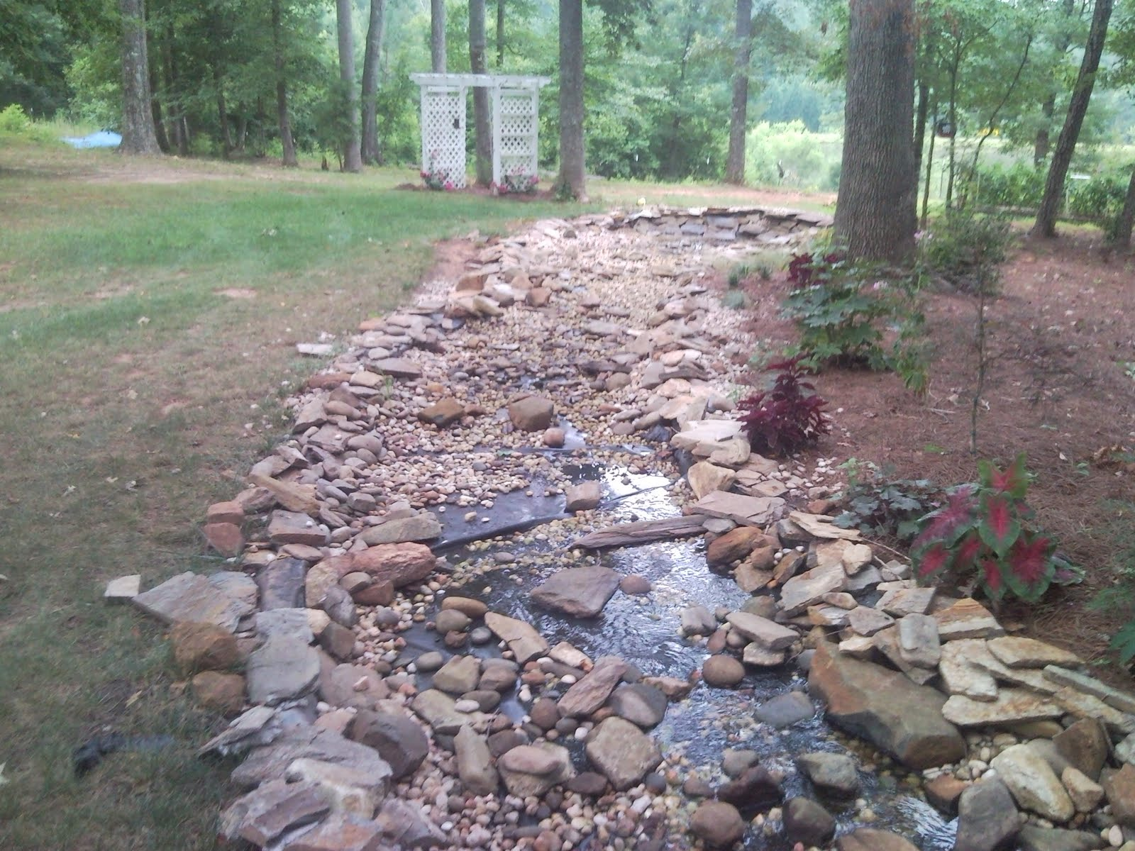Pond Management Greenville Sc Charlotte Nc 31 08 10