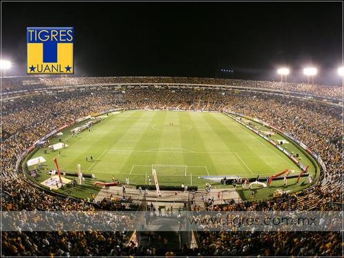 Futbolgb sancionan estadios de tigres y queretaro for Puerta 5b estadio universitario