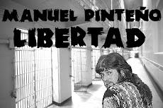 Manuel Pinteño Libertad!!!