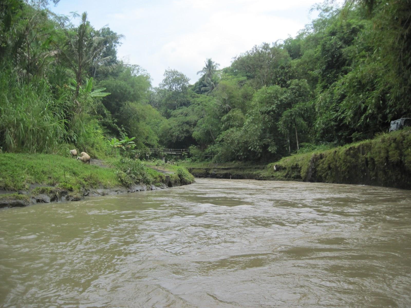 Suasana di pinggir sungai elo - mantap! indah!