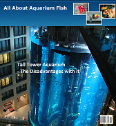 All About Aquarium Fish Magazine July 2010 Issue