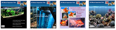 Aquarium Fish Magazine
