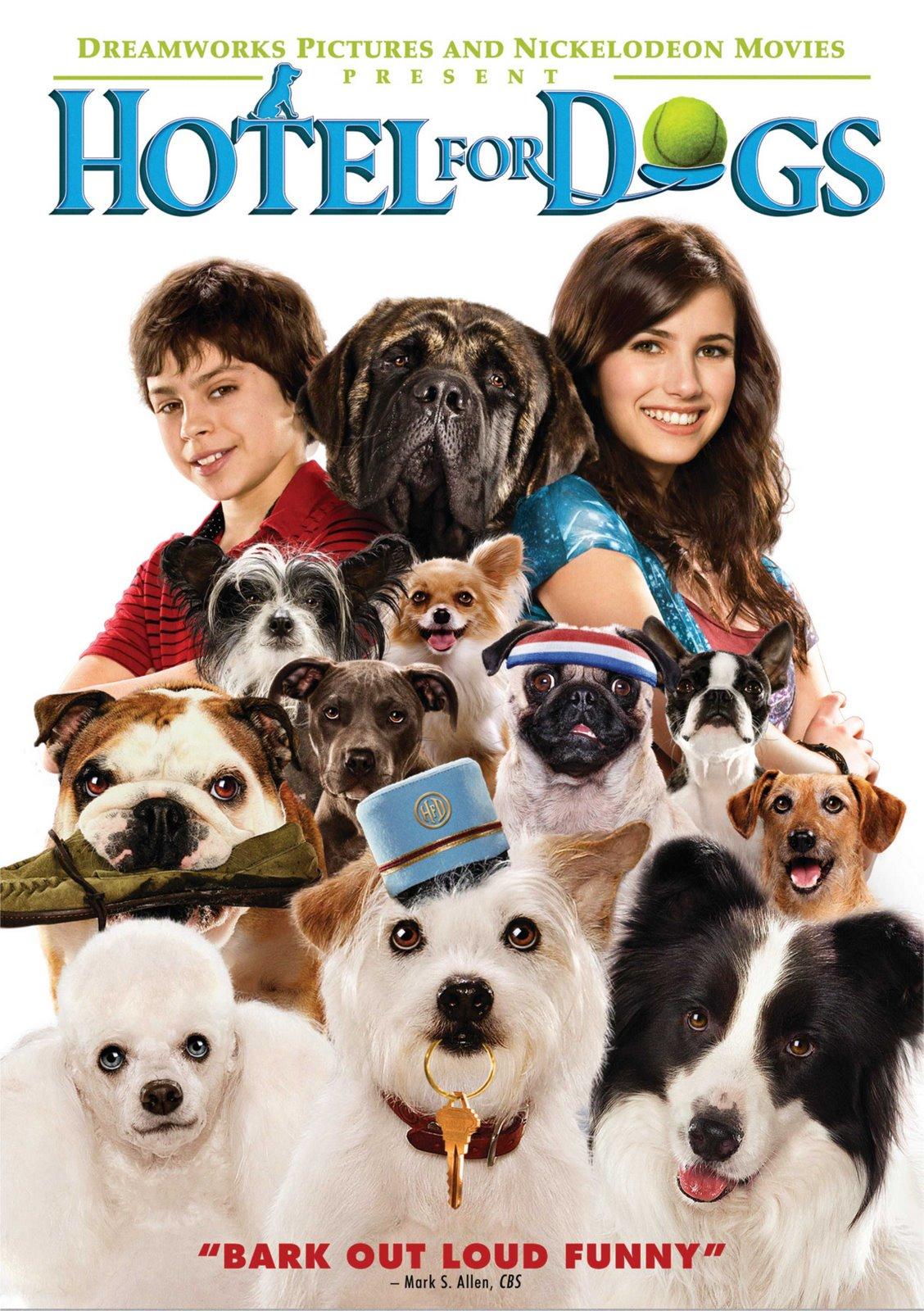 [hotel+for+dogs+dvd.jpg]
