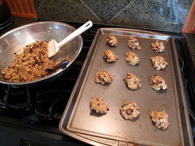 oatmeal chocolate chip cookies photo
