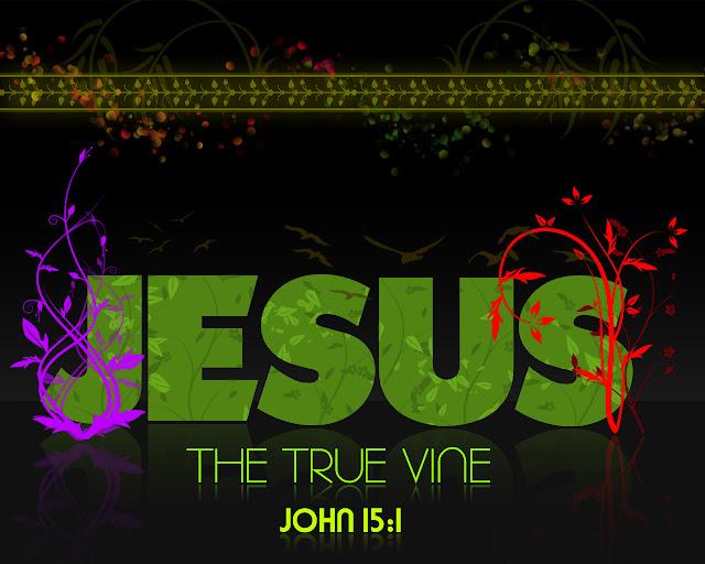 True Vine Productions wallpaper Jesus the True Vine John 15 verse 1