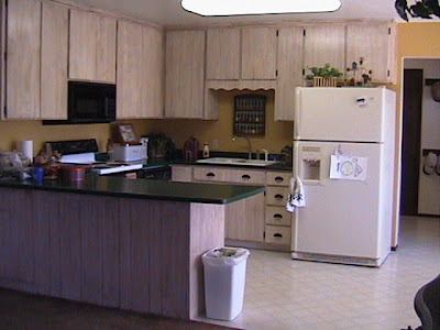 Streamlined Kitchen Cabinet Makeover : Rooms : Home  Garden