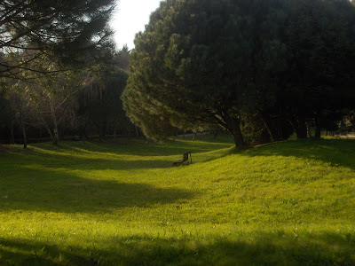 Porto Parque da cidade