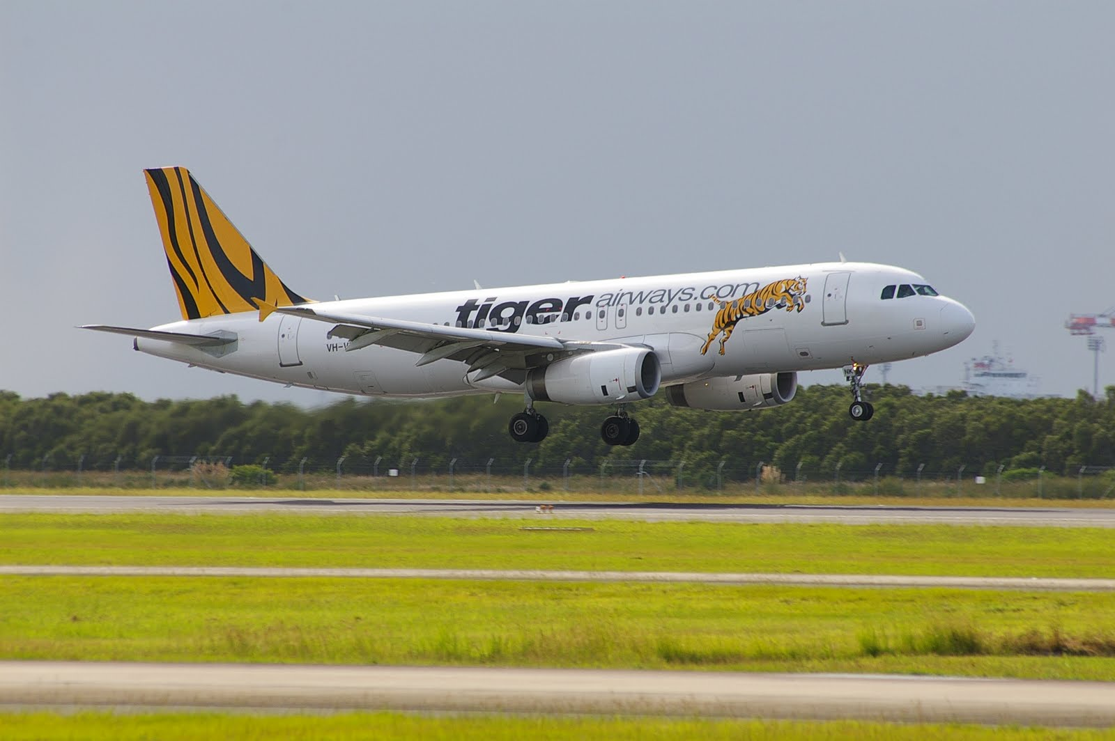 R Tiger Airways South East QLD Aviatio...