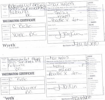 Blank Contracts: Vet Records