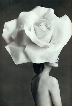 La rebelión consiste en mirar una rosa