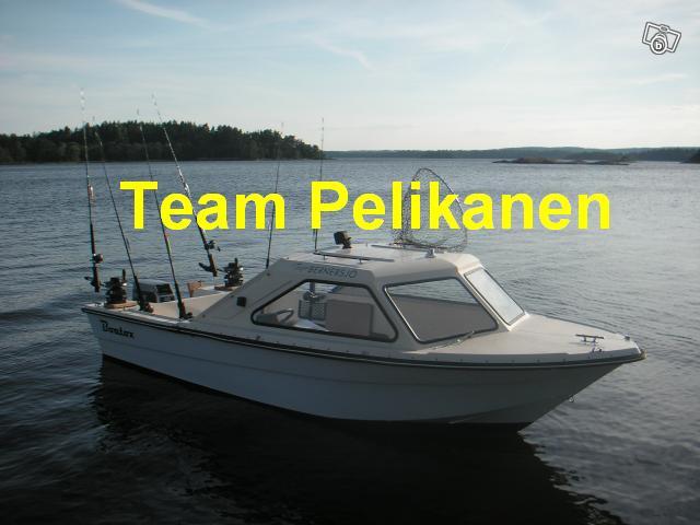 Team Pelikanen