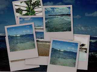 Precious Memories relating to fresh foods and the sea from our trip to Hawaii