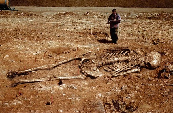 Скелет человека гиганта найденный на