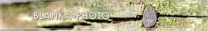 Blanka-Photo