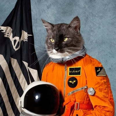 Klaxons - Surfing The Void (album artwork)