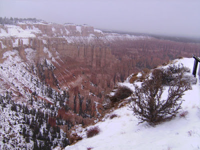 Bryce Point View