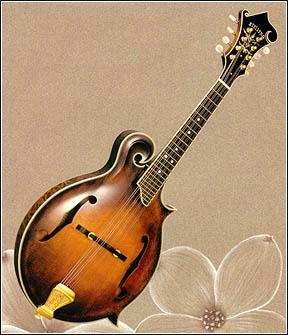 [mandolin]