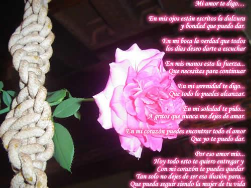 amor poemas. 2011 amor poemas. versos de