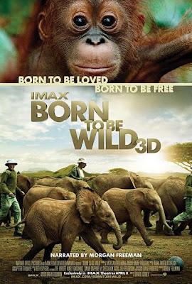 Born to be Wild 3D, poster, movie