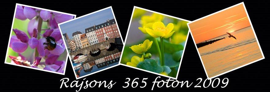 Rajsons 365 Foton 2009