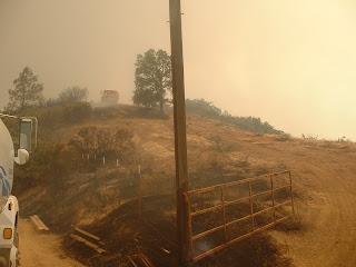 Wildland fire picture