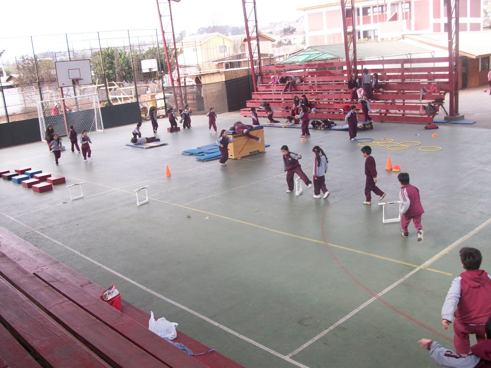 Circuito Motriz : EducacÍon fisica albert einstein º