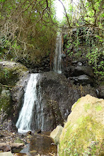Cascada-