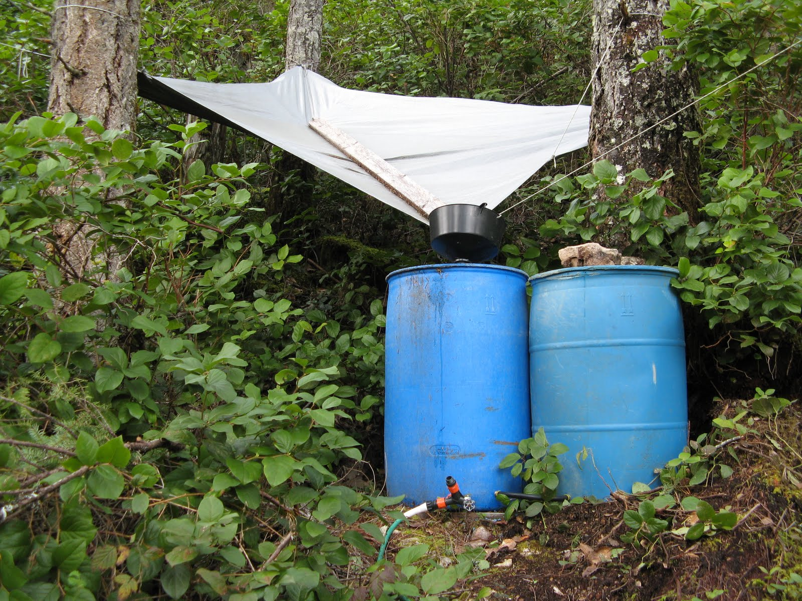 powell river books blog rain barrel water collection system