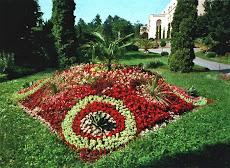 Cluj - Gradina botanica