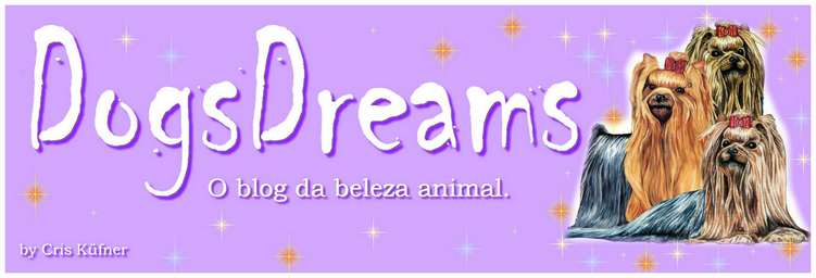 Dogs Dreams