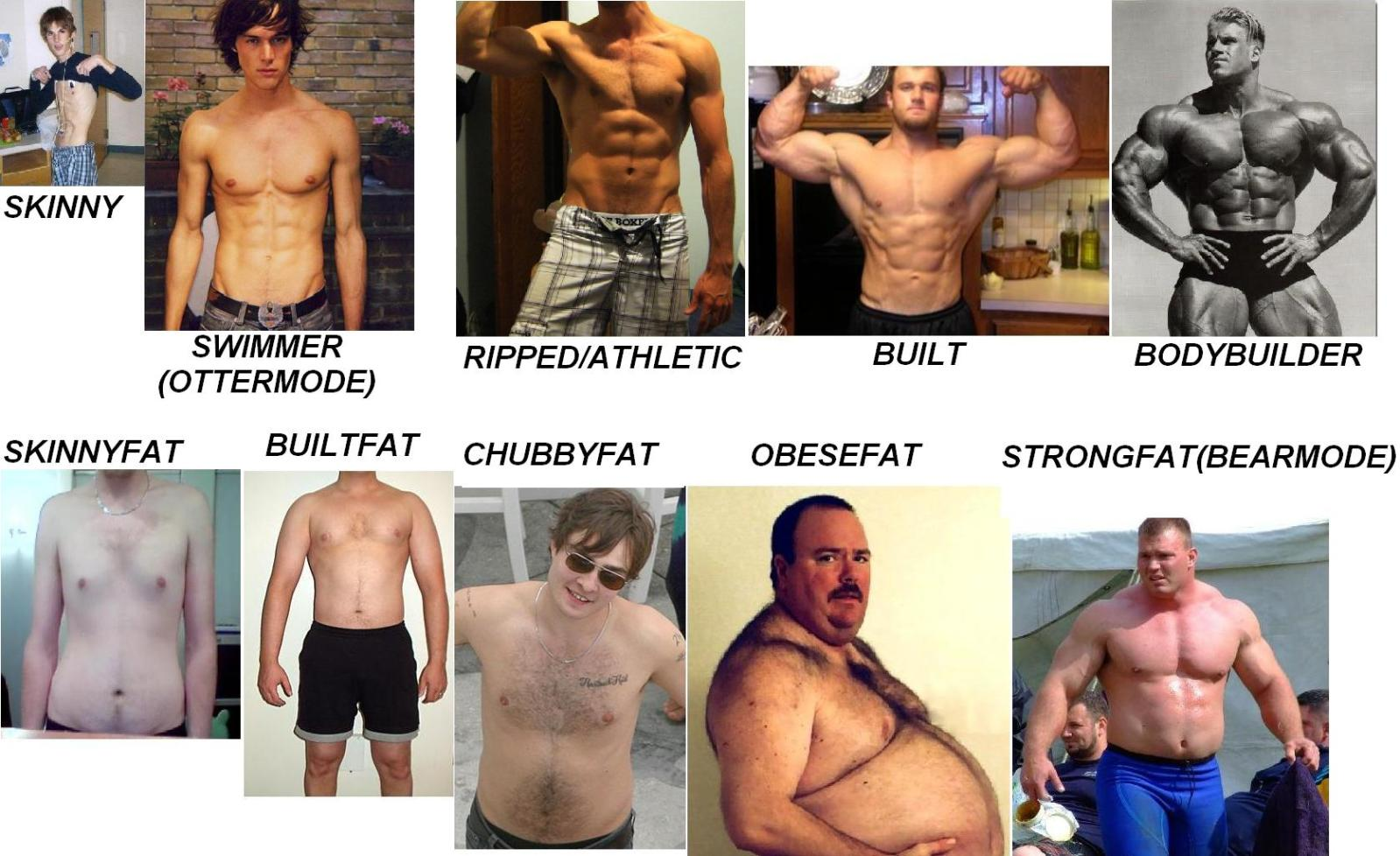 how to lose body fat reddit