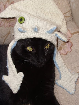 cat in hat. cat in hat