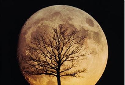 Fakta Yang Menakjubkan Dari Bulan