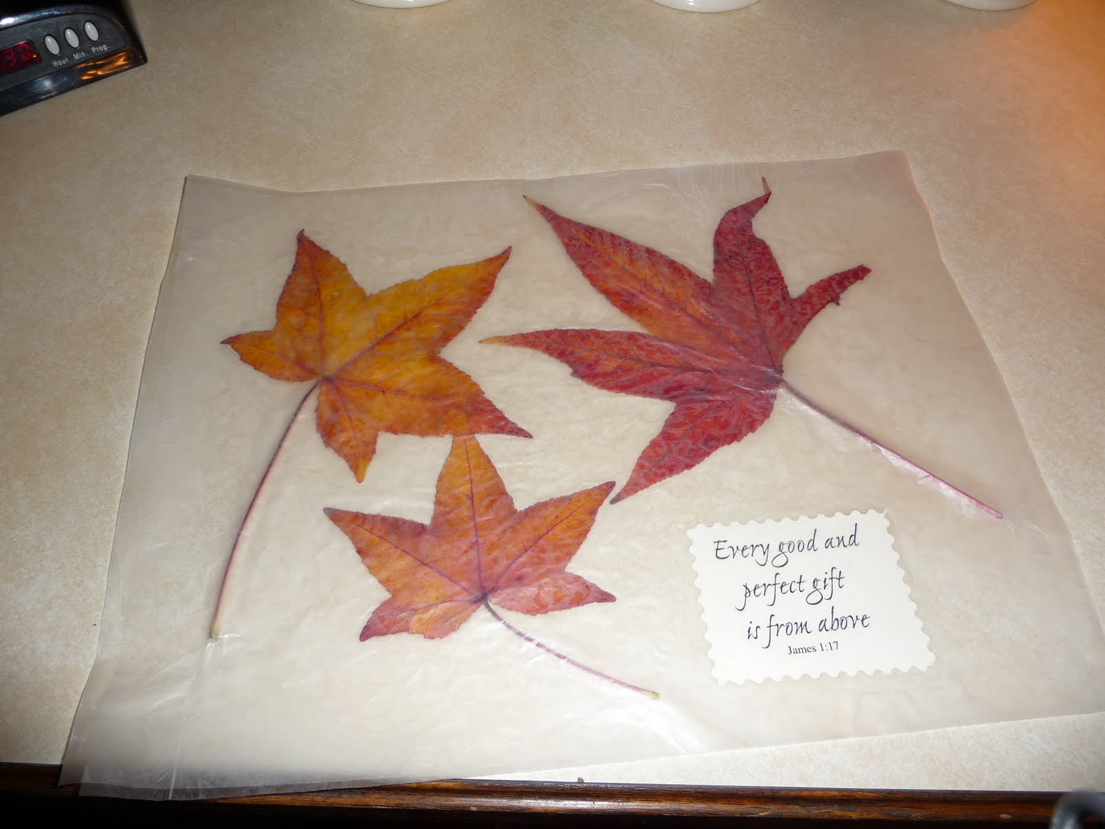 Kids Thanksgiving Placemats Craft