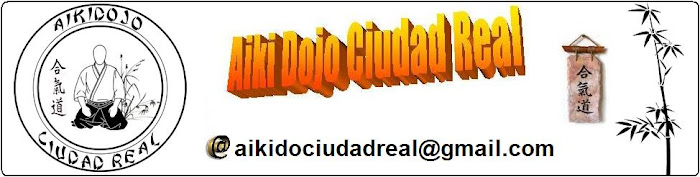 Aiki Dojo Ciudad Real