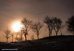 Viseu de Sus iarna - de Andreica Daniel