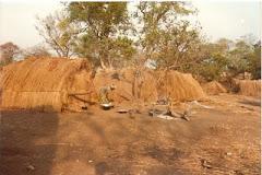 Paisagem em Moçambique