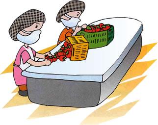 Se ora l cuma normas de higiene personal utensilios y for Normas de higiene personal en la cocina