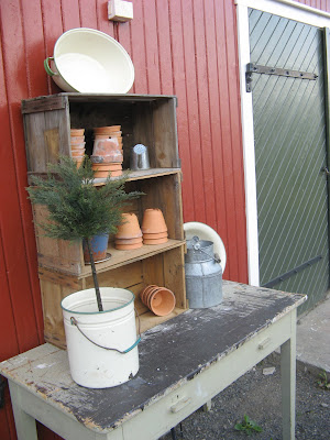 Trines Hus og Hage: Min hage i juni - del 1