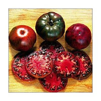 growing tomatoes from seeds you can have some fun growing tomatoes from seeds. Black Bedroom Furniture Sets. Home Design Ideas