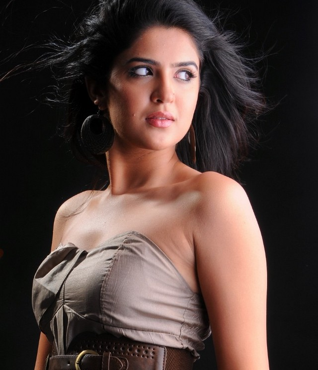 south Indian hot film actress hot pictures and photos