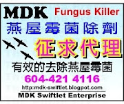 First & Best Fungus Killer for Swiftlet Houses in the market